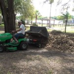 Hubby Tackling the Leaf Mounds