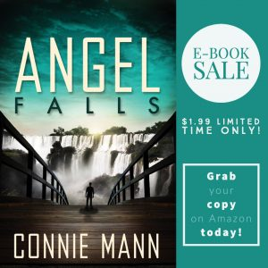Angel Falls ebook only $1.99